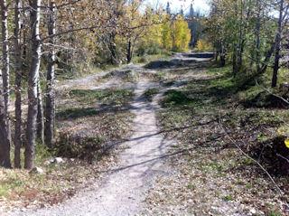 Happy Creek Bike Park - Pre Maintenance